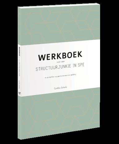 Werkboek structuurjunkie