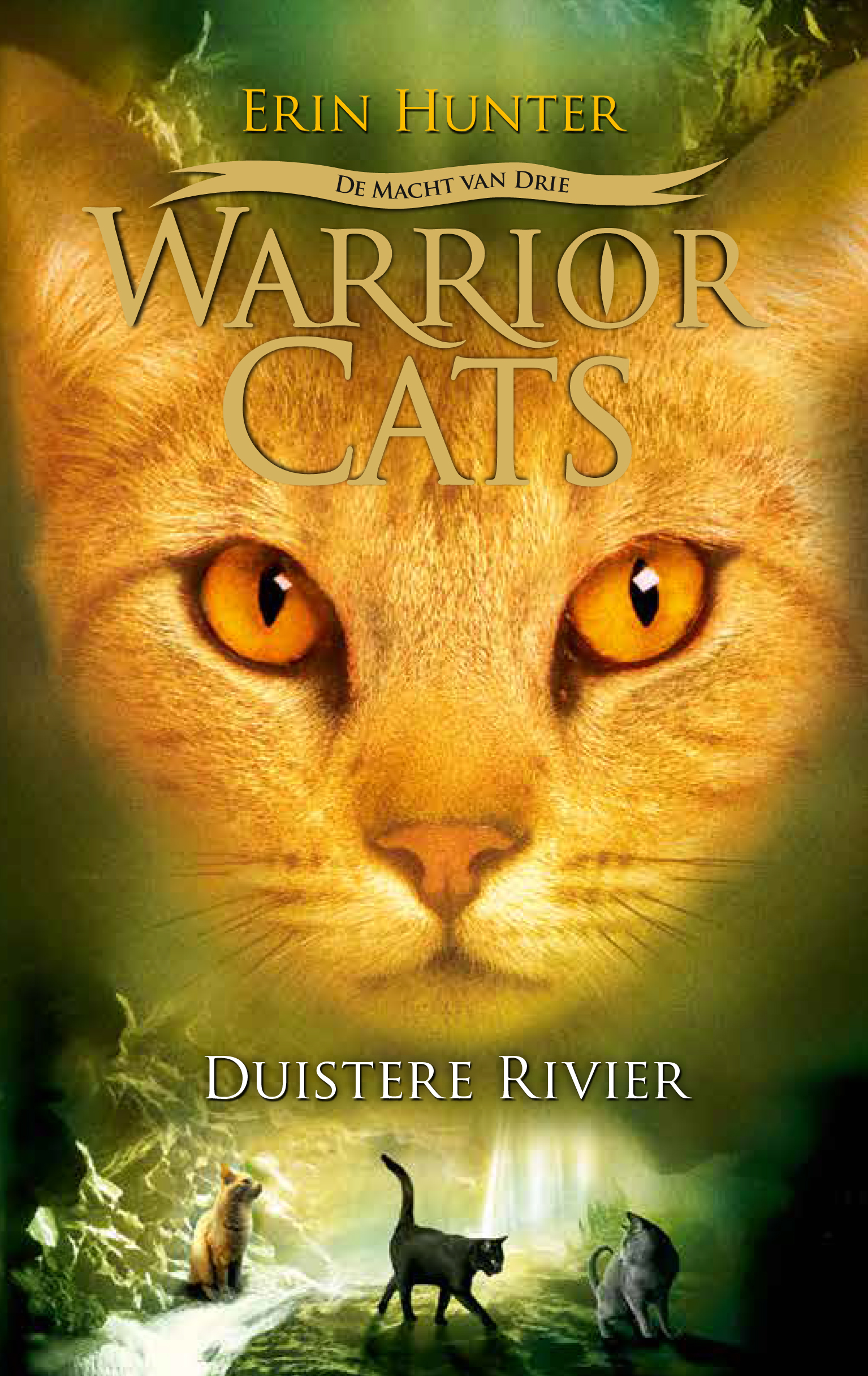 Duistere rivier cover