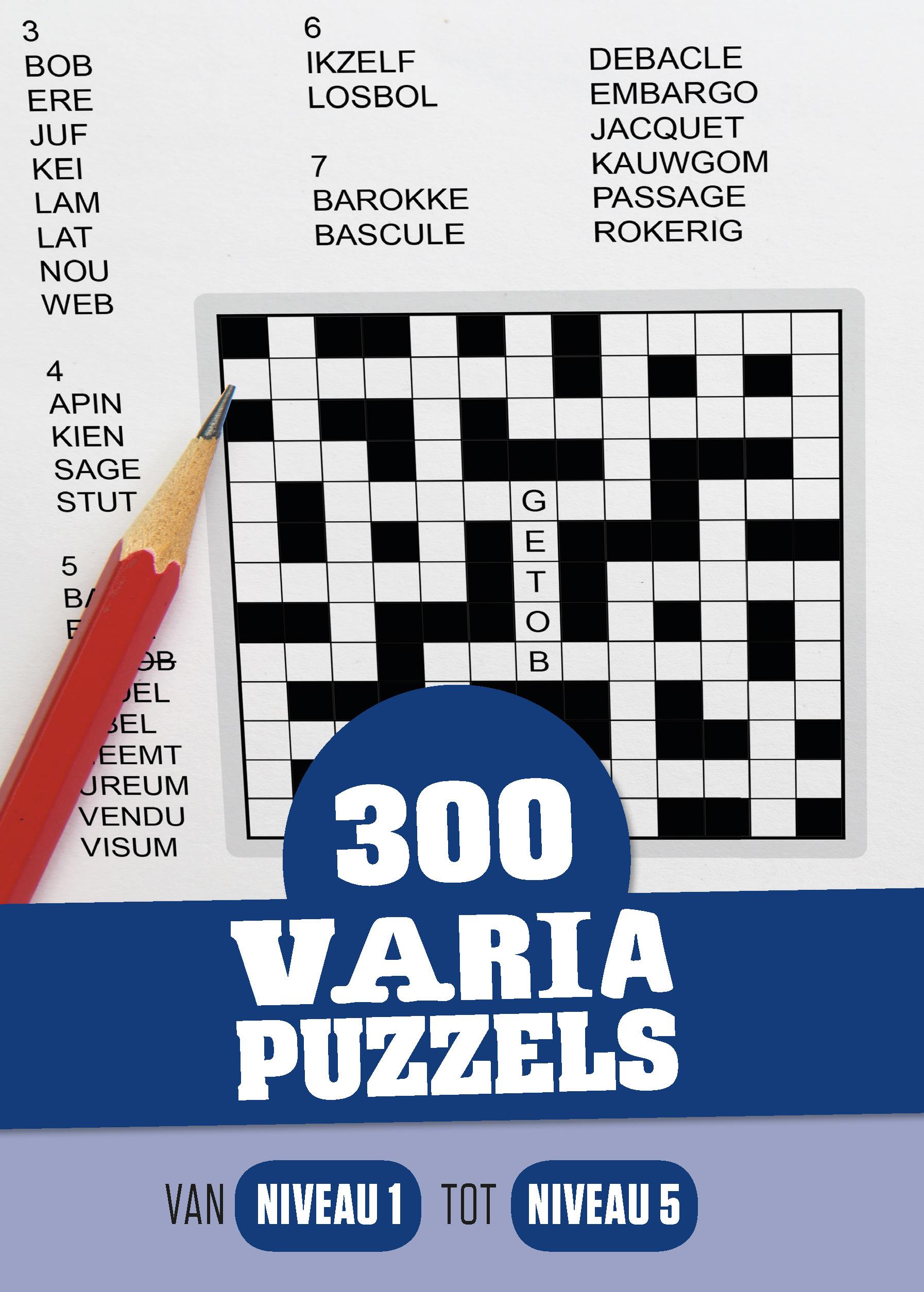 Cover 300 Varia puzzels: een foto van een Zweedse puzzel