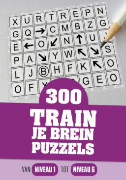 Cover van 300 Train je brein Puzzels